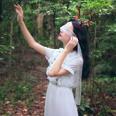 印象小马 模特实拍 2016秋装新款小清新复古森女刺绣荷叶边长袖连衣裙