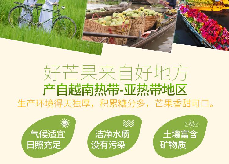 【杞农优食】越南玉芒新鲜水果 单果200-300g 5斤装 清甜核小进口芒果评价